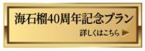 海石榴40周年記念プラン